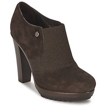 Shoes Women Low boots Alberto Gozzi SOFTY MEDRA Brown