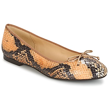 Shoes Women Ballerinas Betty London MICORO Brown / Python