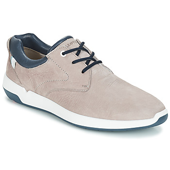 Shoes Men Low top trainers Lloyd ACHILLES Beige