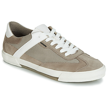 Shoes Men Low top trainers Geox U KAVEN Grey