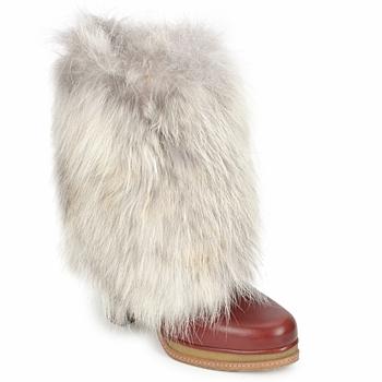 Shoes Women Ankle boots D&G DS3553 Brown / BEIGE