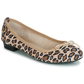 Shoes Women Ballerinas André CINDY Leopard