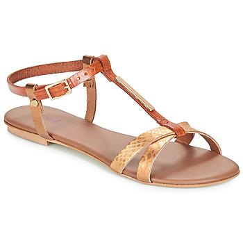 Shoes Women Sandals André RHODES Brown / Gold