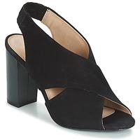 Shoes Women Sandals André SANTIE Black