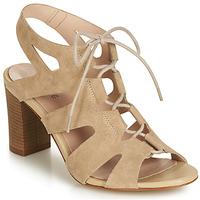 Shoes Women Sandals André ROMANESQUE Beige