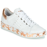 Shoes Women Low top trainers Felmini ANILINA White