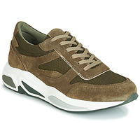 Shoes Women Low top trainers André ROLLO Green
