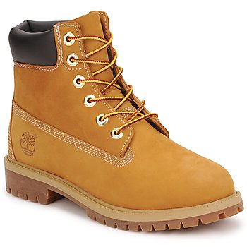 Shoes Children Mid boots Timberland 6 IN PREMIUM WP BOOT Brown