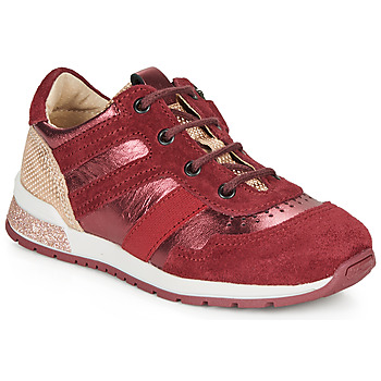 Shoes Girl Low top trainers Catimini CAMELINE Vtc / Bordo