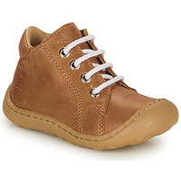 Shoes Boy High top trainers GBB FREDDO Cognac