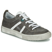 Shoes Boy Low top trainers Achile HOLMAN Anthracite
