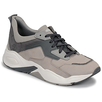 Shoes Women Low top trainers Timberland DELPHIVILLE LEATHER SNEAK Grey