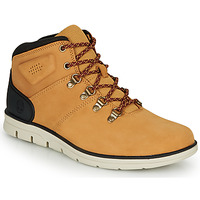 Shoes Men High top trainers Timberland BRADSTREET HIKER Wheat / Brown