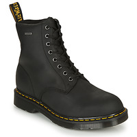 Shoes Mid boots Dr Martens MOLLY GLITTER Black
