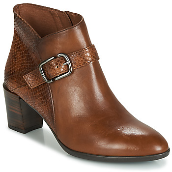 Shoes Women Ankle boots Hispanitas RITA Brown