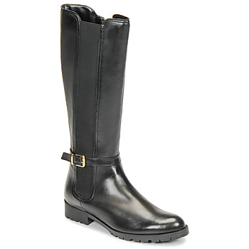 Shoes Women Boots André ELODIE Black