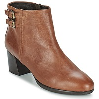 Shoes Women Ankle boots Geox ERIKAH B Brown