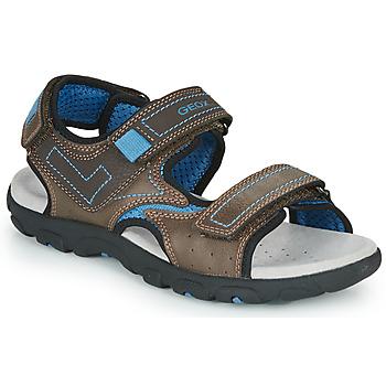 Shoes Boy Sports sandals Geox JR SANDAL STRADA Brown / Blue