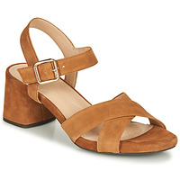 Shoes Women Sandals Geox D GENZIANA MID Brown
