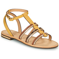 Shoes Women Sandals Geox D SOZY Yellow / Brown / Gold