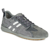 Shoes Men Low top trainers Geox U SNAKE.2 Grey
