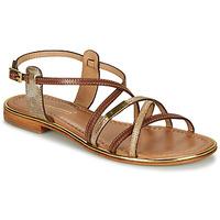Shoes Women Sandals Les Tropéziennes par M Belarbi HARRY Tan / Gold