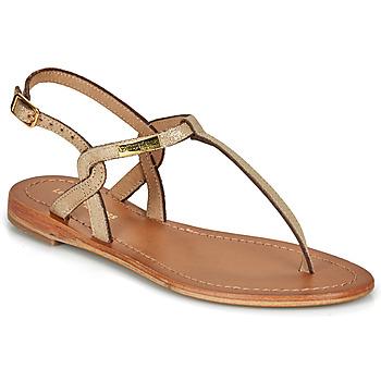 Shoes Women Sandals Les Tropéziennes par M Belarbi BILLY Gold / Iris