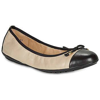 Shoes Women Ballerinas Caprice BUCLETTE Black / Beige