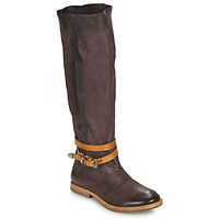 Shoes Women Boots Airstep / A.S.98 ZEPORT HIGH Violet