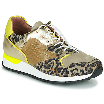 Shoes Women Low top trainers Mjus CAST Kaki / Leopard