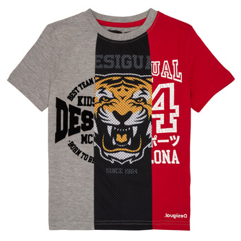material Boy short-sleeved t-shirts Desigual RAFAEL Multicolour