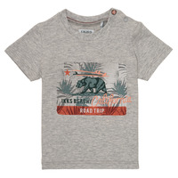 material Boy short-sleeved t-shirts Ikks AMBRE Grey