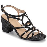 Shoes Women Sandals André JUDITH Black