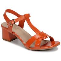 Shoes Women Sandals André JOSEPHINE Orange