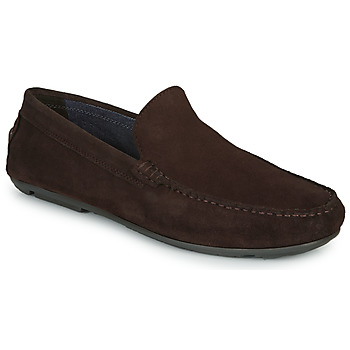 Shoes Men Loafers André BIOUTY Brown