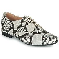 Shoes Women Derby shoes André COMPLICITY Beige