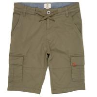 material Boy Shorts / Bermudas Timberland TAO Green