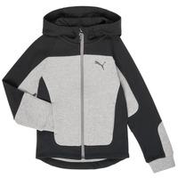 material Boy sweaters Puma EVOST HOOD JKT Grey