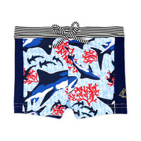 material Boy Trunks / Swim shorts Petit Bateau FEUILLAGE Multicolour