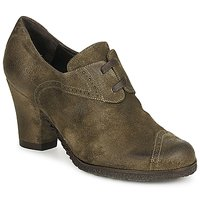 Shoes Women Low boots Audley RINO LACE TAUPE