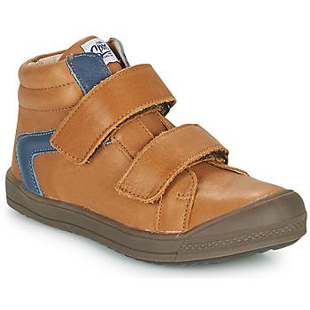 Shoes Boy High top trainers GBB KOLAN Brown
