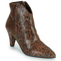Shoes Women Ankle boots Ravel LEVISA Python