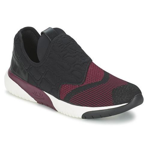 Shoes Women Low top trainers Ash SODA Black / BORDEAUX