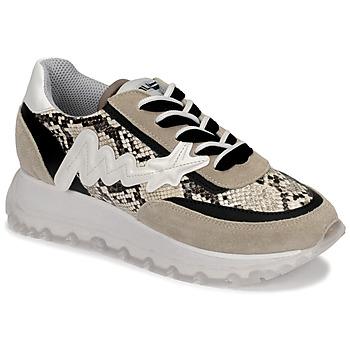 Shoes Women High top trainers Meline TRO1700 Beige / Python