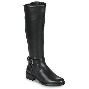 Shoes Women Boots Les Petites Bombes ARINA Black