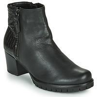 Shoes Women Ankle boots Gabor 5665367 Black