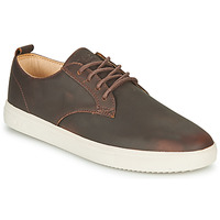 Shoes Men High top trainers Clae ELLINGTON SP Brown