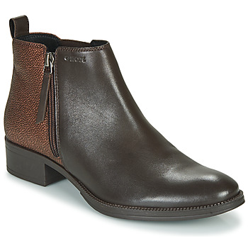 Shoes Women Ankle boots Geox LACEYIN Brown