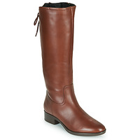 Shoes Women Boots Geox FELICITY Brown