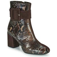 Shoes Women Ankle boots Perlato JAMIROCK Brown